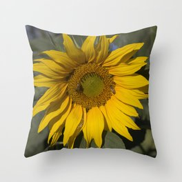 Lively Sunflower Throw Pillow