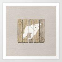 seashell Art Prints featuring Seashell by Alyn Spiller