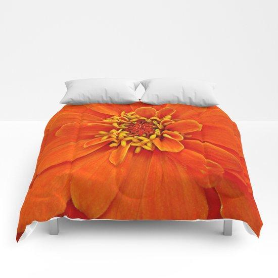 Orange Petals Comforters