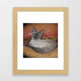 MILO Framed Art Print