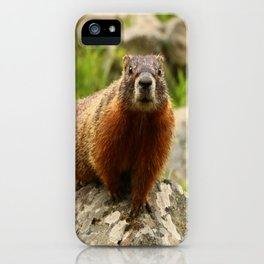 On The Rocks Marmot iPhone Case
