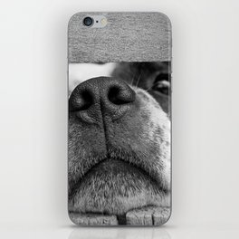 dog looking through fence iPhone Skin
