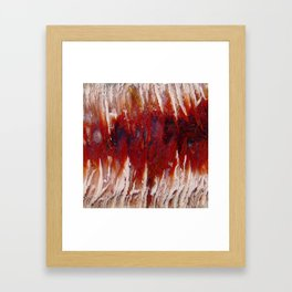 Raspberry Angelwing Framed Art Print