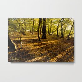 London Woods Metal Print