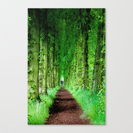 Lady Lucy's Walk Canvas Print