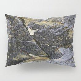 Reflective Rock Surface with Lichen Texture Pillow Sham