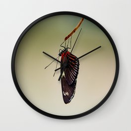Hanging Doris Longwing Butterfly Wall Clock