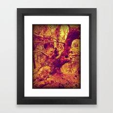 Old Man of the Woods. Framed Art Print