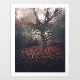 Gentle November Art Print