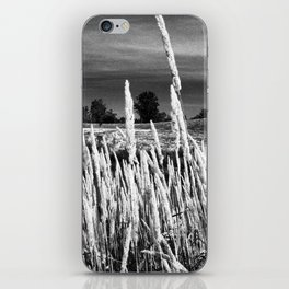 Long Grass iPhone Skin