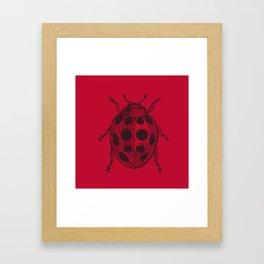 Lady Bug - Red Framed Art Print