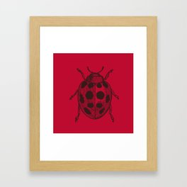 Lady Bug - Red Framed Art Print