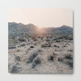 Sunset in Joshua Tree National Park Metal Print