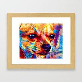 Chihuahua 2 Framed Art Print