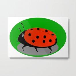 June beetle Metal Print