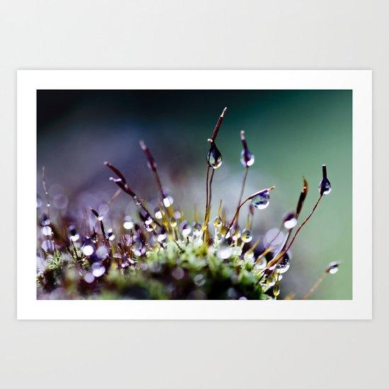 mossy things Art Print