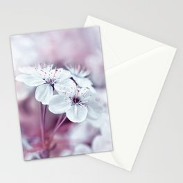 Spring 113 Stationery Cards