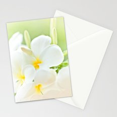 White Plumeria 2 Stationery Cards