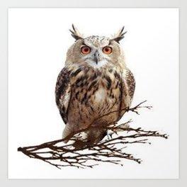 WILDERNESS BROWN OWL IN WHITE Art Print