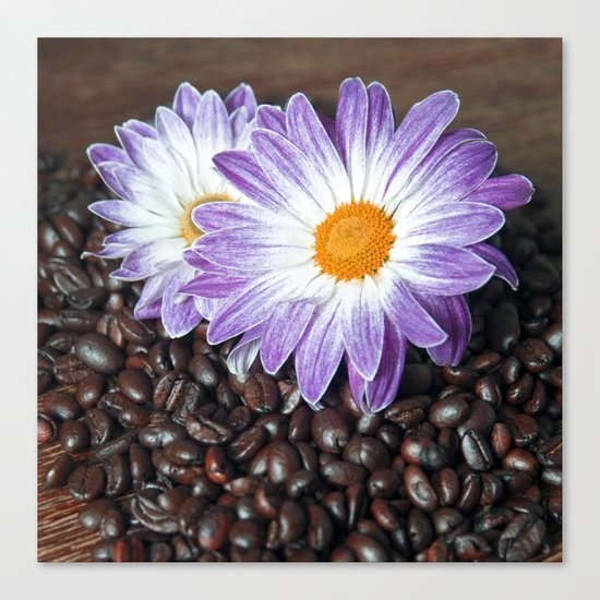 COFFEE & VIOLET DAISY  Canvas Print