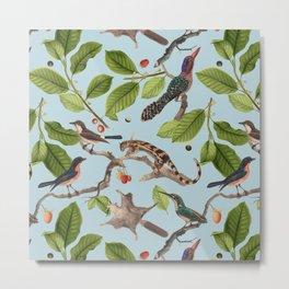 Birdies Blue Metal Print