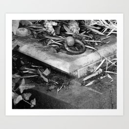 old grave Art Print