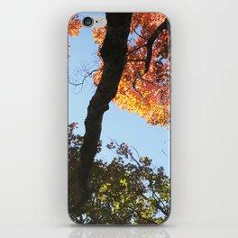 take a HIKE ☺ iPhone Skin
