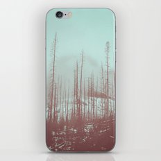 Burnt Winter iPhone & iPod Skin
