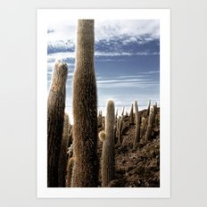 Cactus in Incahuasi Art Print