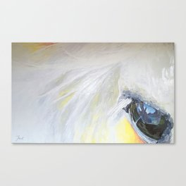Horseeye Canvas Print
