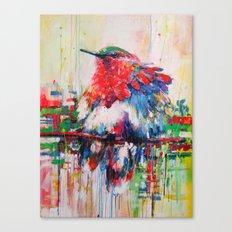 colorful bird- nature  Canvas Print