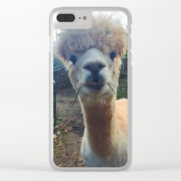 Alpaca Smiles Clear iPhone Case