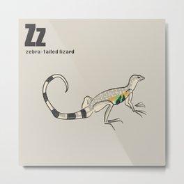 zebra-tailed lizard Metal Print