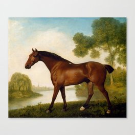 George Stubbs - Truss, A Hunter Canvas Print