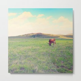 Great Prairie Metal Print