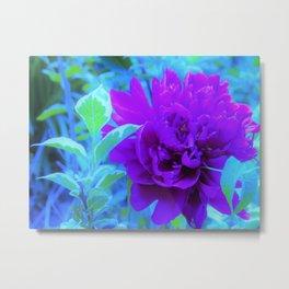 Moody Weigela Garden Purple Peony Flower Metal Print