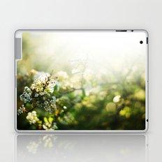summer light  Laptop & iPad Skin