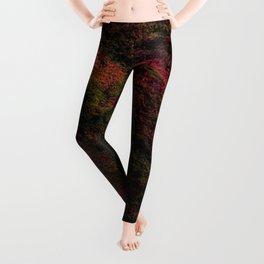Dark Warmth Leggings