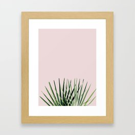 Palm on Pink Framed Art Print