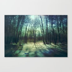 Winter lake Canvas Print