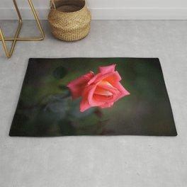 Red rose on a dark background Rug