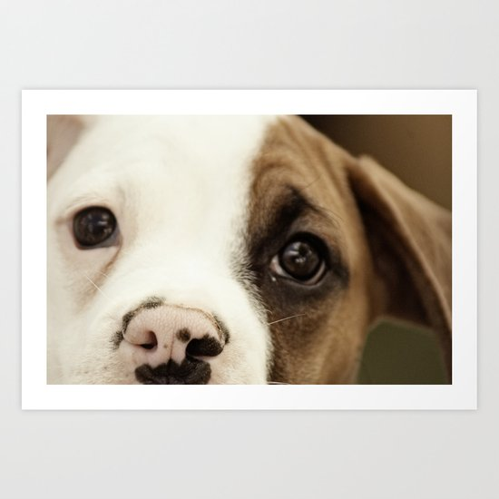 Boxer Nose Art Print