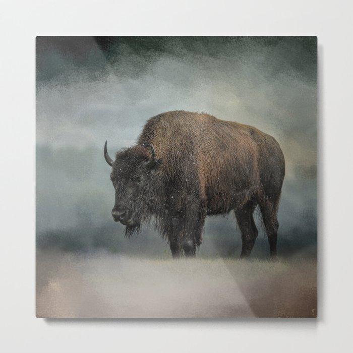 Stormy Day - Buffalo - Wildlife Metal Print