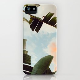 tropical summer evening iPhone Case