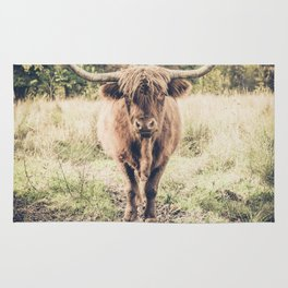 Highland scottish cow cattle long horn Rug
