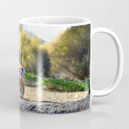 Honey & Robin - Autumn nature Coffee Mug