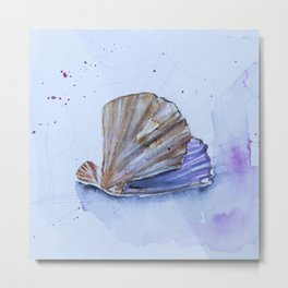 The great scallop - Pecten maximus Metal Print