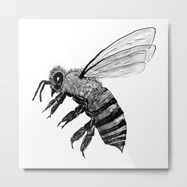 Amos Fortune Bee Metal Print