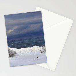 Winter Beach Shrubs Stationery Cards