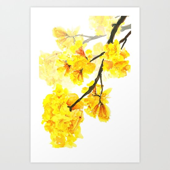 yellow trumpet trees watercolor yellow roble flowers yellow Tabebuia Art Print